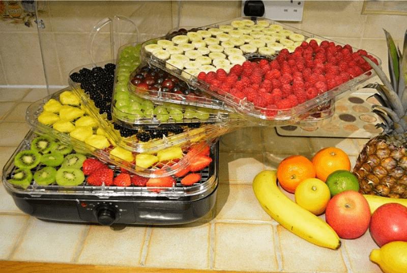 Máy sấy hoa quả mini Thiết kế đẹp mắt, tiện lợi
