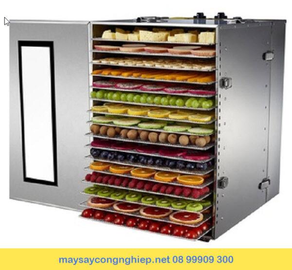 máy sấy thực phẩm mini